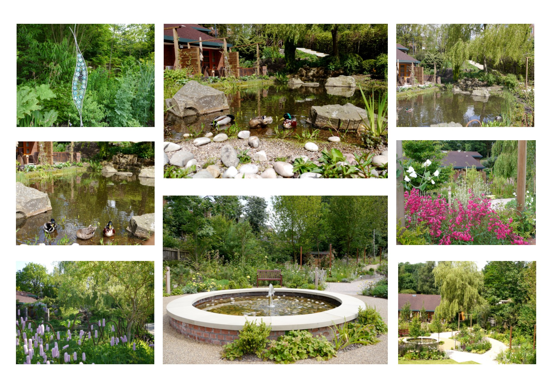 Garden_pages_-_pond.jpg