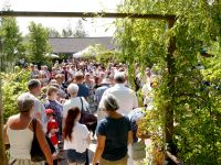 Summer Fete and Butterfly Release