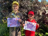 Children's Butterfly Art Competition