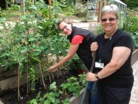 Our Sensory Gardens - A Haven for Patients, Staff & Volunteers